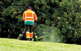 Grounds maintenance and safety: Grassed areas and playing fields
